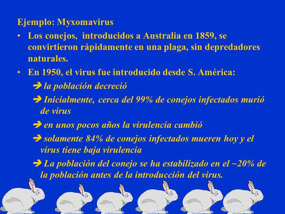 Ejemplo: Myxomavirus Los conejos, introducidos a Australia en 1859, se convirtieron rápidamente en una plaga, sin depredadores naturales.