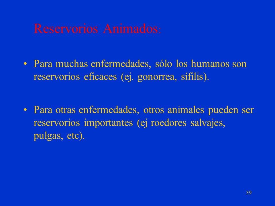 Reservorios Animados: