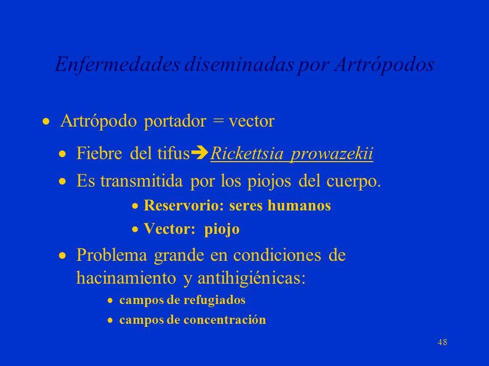 Enfermedades diseminadas por Artrópodos