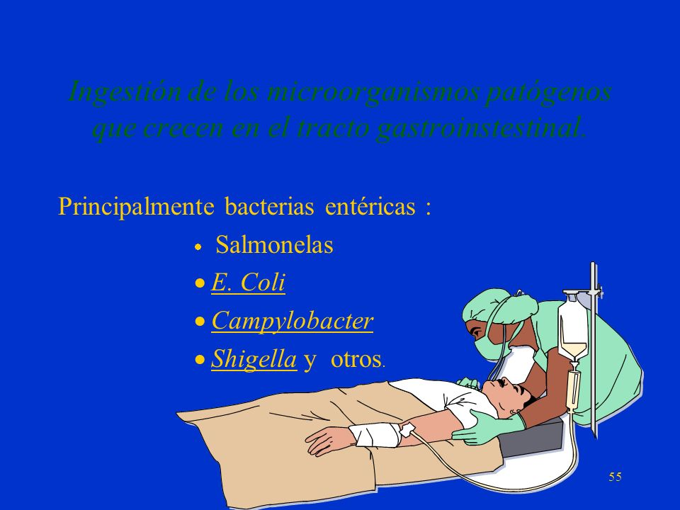 Ingestión de los microorganismos patógenos que crecen en el tracto gastroinstestinal.