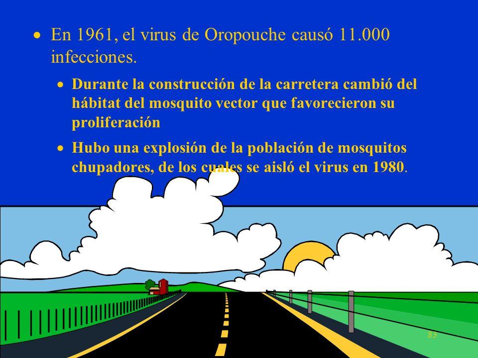 En 1961, el virus de Oropouche causó 11.000 infecciones.