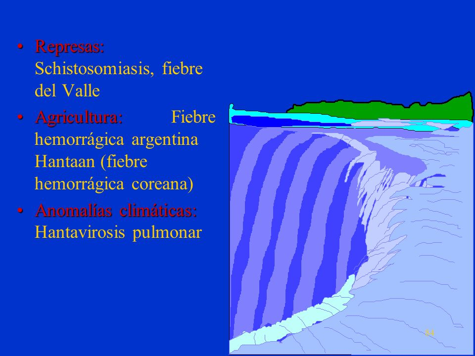Represas: Schistosomiasis, fiebre del Valle