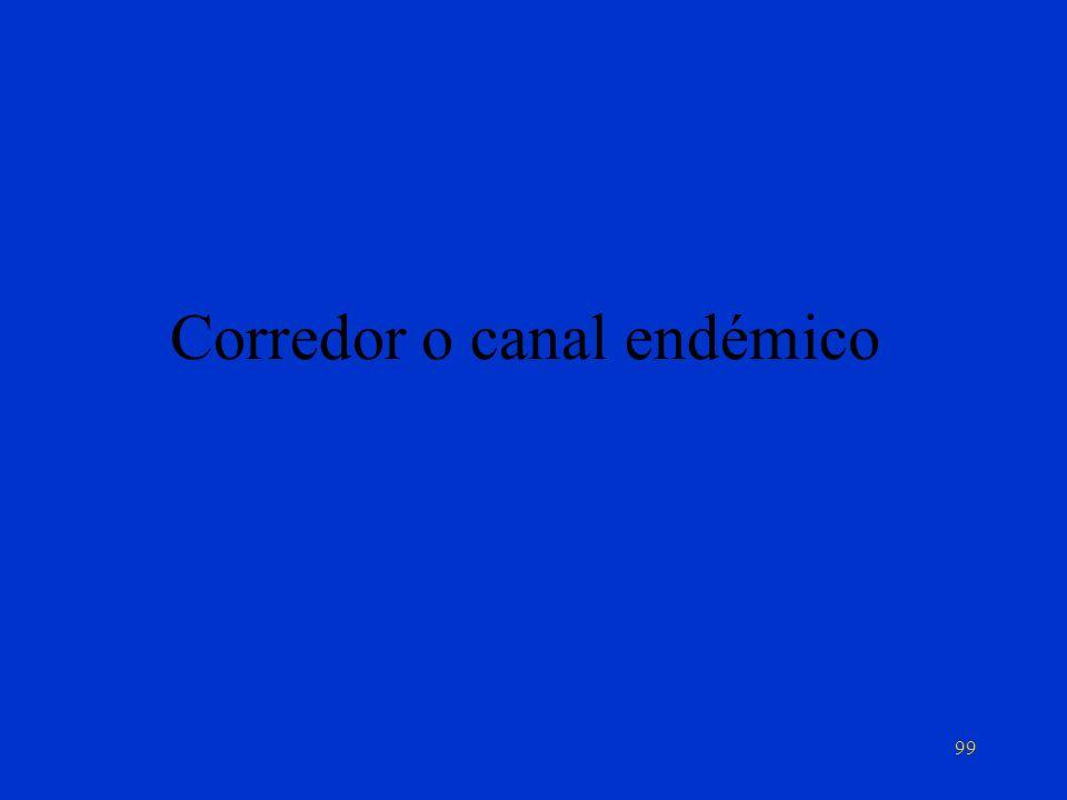 Corredor o canal endémico