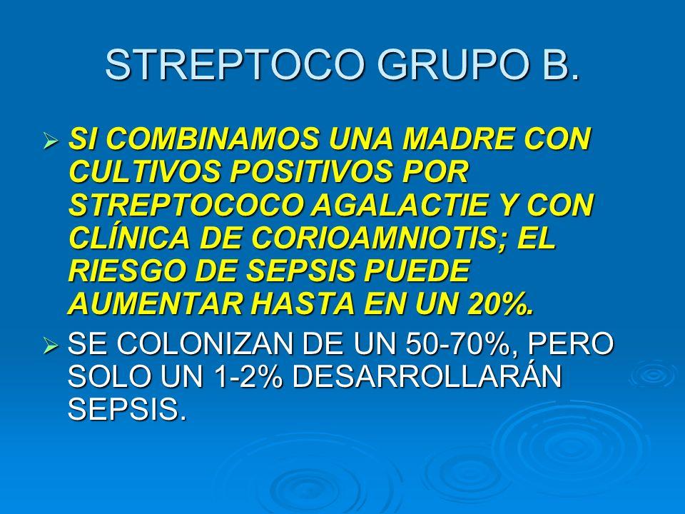 STREPTOCO GRUPO B.