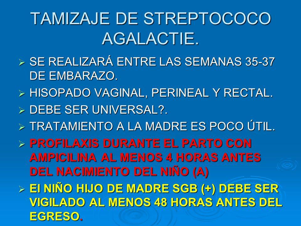 TAMIZAJE DE STREPTOCOCO AGALACTIE.