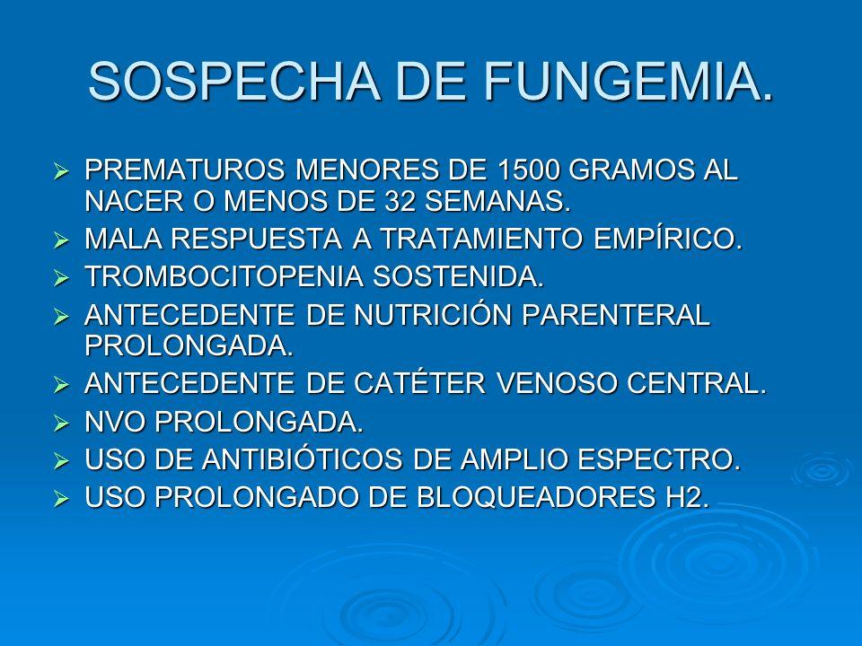 SOSPECHA DE FUNGEMIA.PREMATUROS MENORES DE 1500 GRAMOS AL NACER O MENOS DE 32 SEMANAS. MALA RESPUESTA A TRATAMIENTO EMPÍRICO.