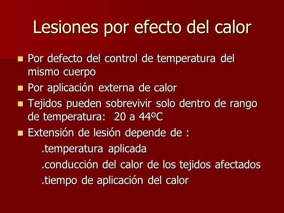 Lesiones por efecto del calor