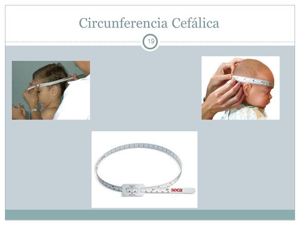 Circunferencia Cefálica
