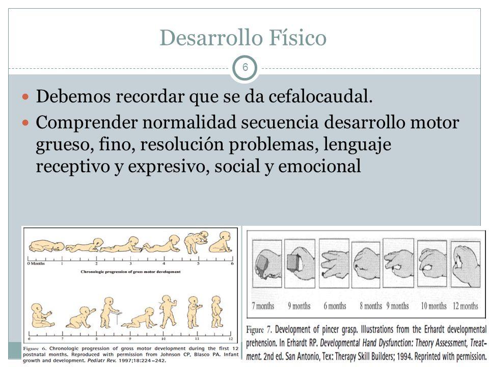 Desarrollo Físico Debemos recordar que se da cefalocaudal.