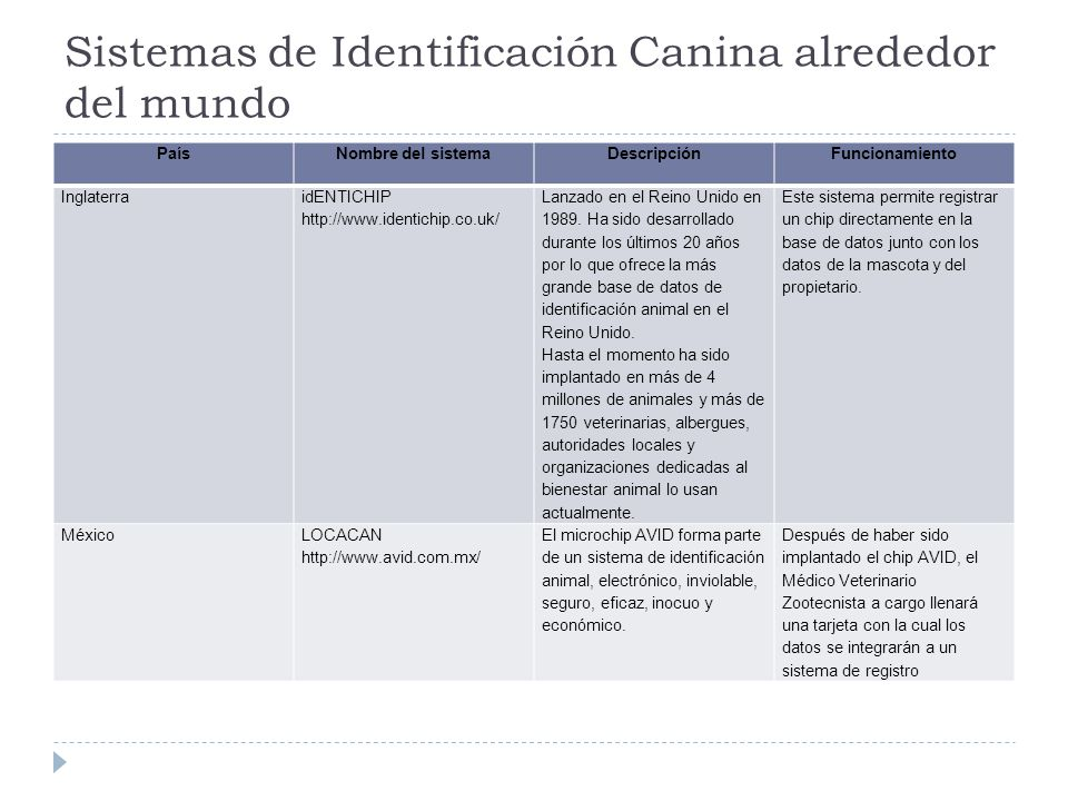 Sistemas de Identificación Canina alrededor del mundo
