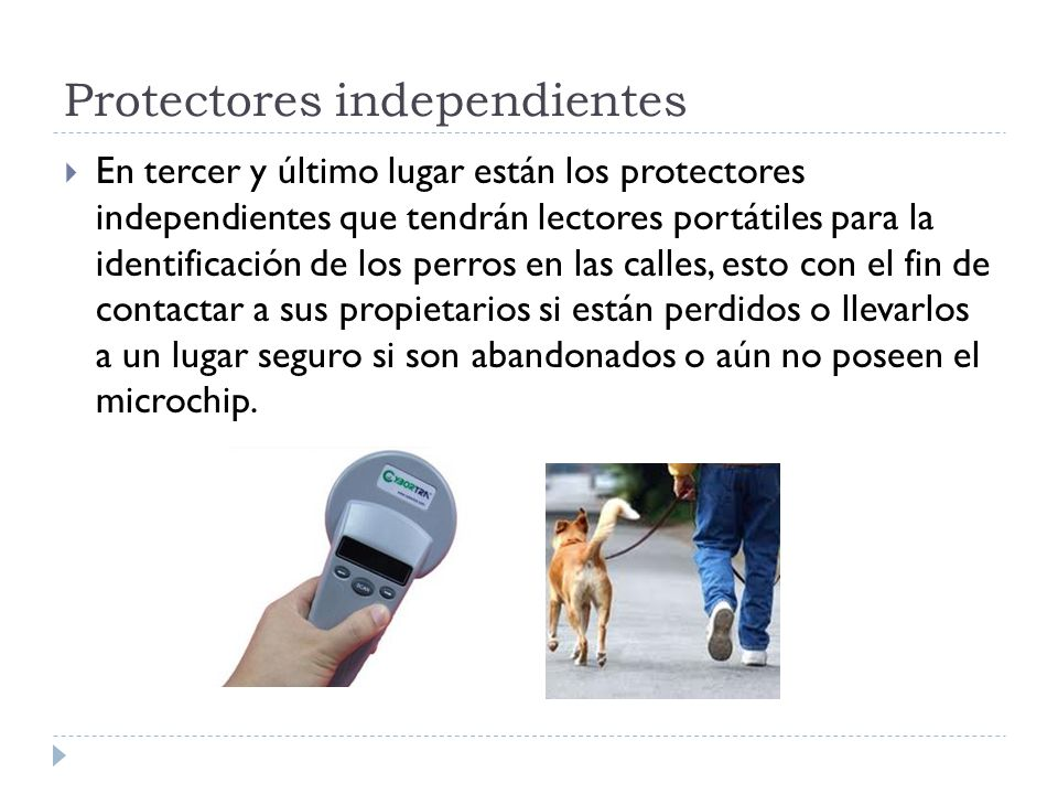 Protectores independientes