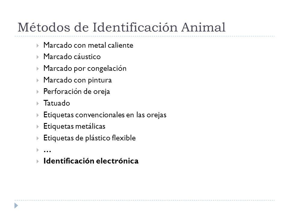 Métodos de Identificación Animal