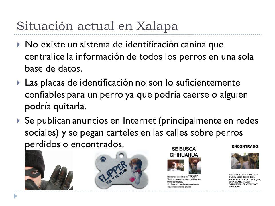 Situación actual en Xalapa