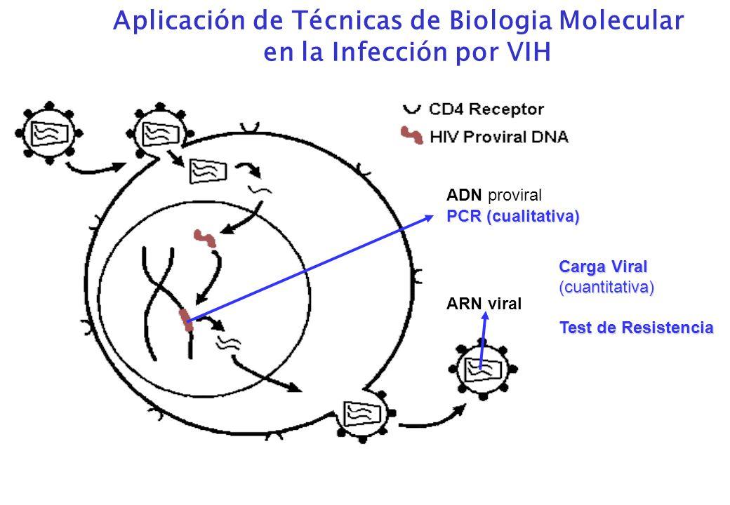 Aplicación de Técnicas de Biologia Molecular
