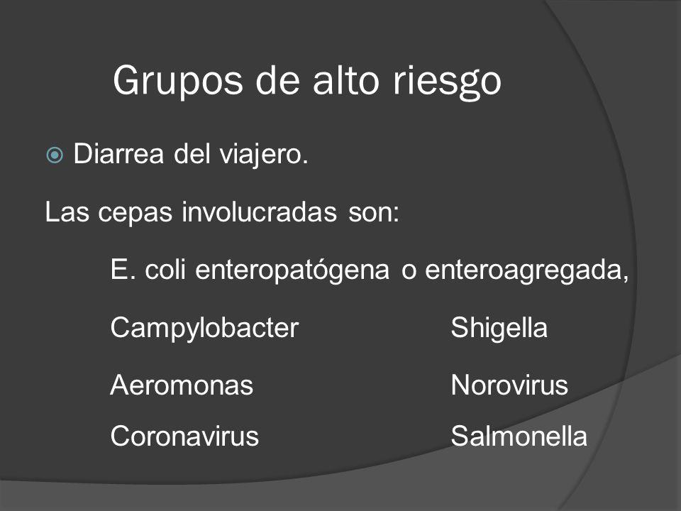 Grupos de alto riesgo Diarrea del viajero. Las cepas involucradas son:
