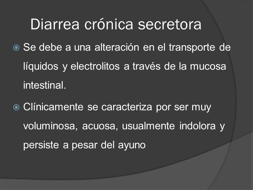 Diarrea crónica secretora