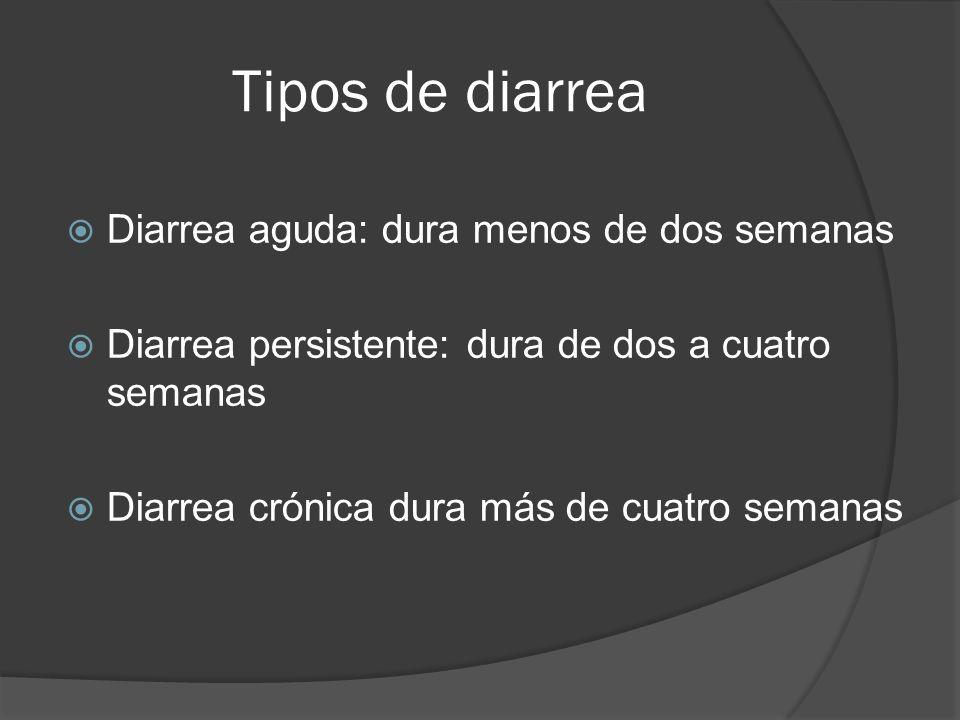 Tipos de diarrea Diarrea aguda: dura menos de dos semanas