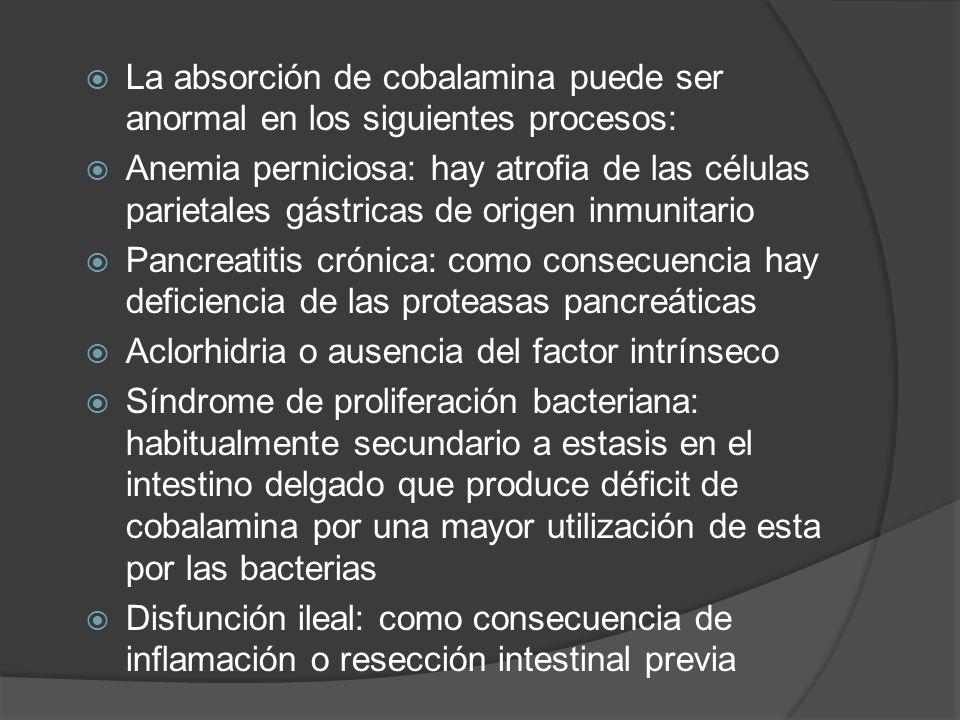 La absorción de cobalamina puede ser anormal en los siguientes procesos: