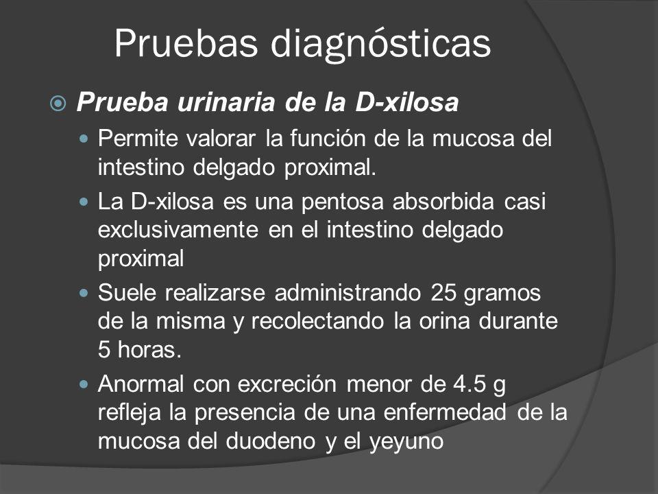 Pruebas diagnósticas Prueba urinaria de la D-xilosa