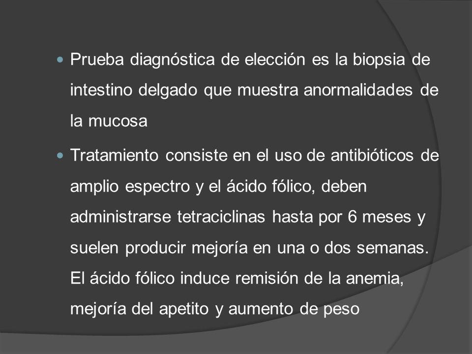 Prueba diagnóstica de elección es la biopsia de intestino delgado que muestra anormalidades de la mucosa