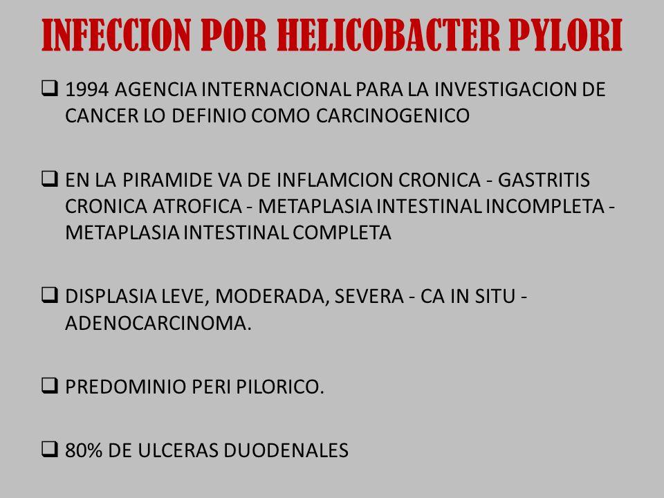 INFECCION POR HELICOBACTER PYLORI