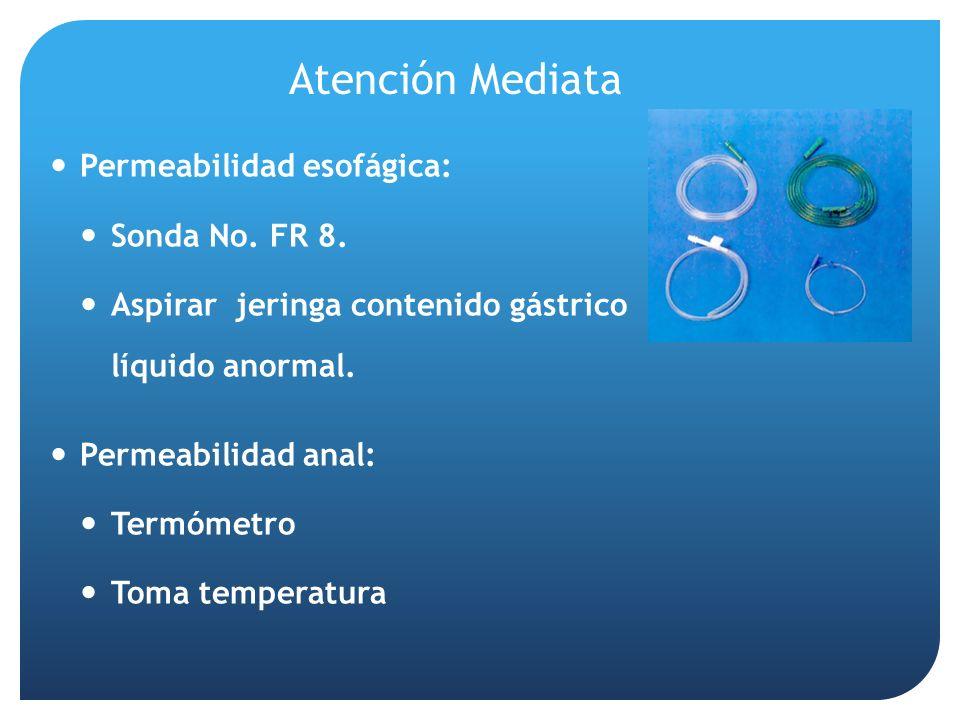 Atención Mediata Permeabilidad esofágica: Sonda No. FR 8.