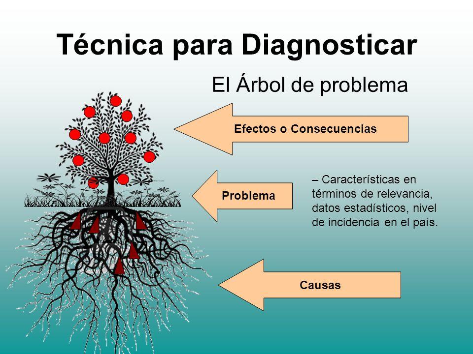 Técnica para Diagnosticar
