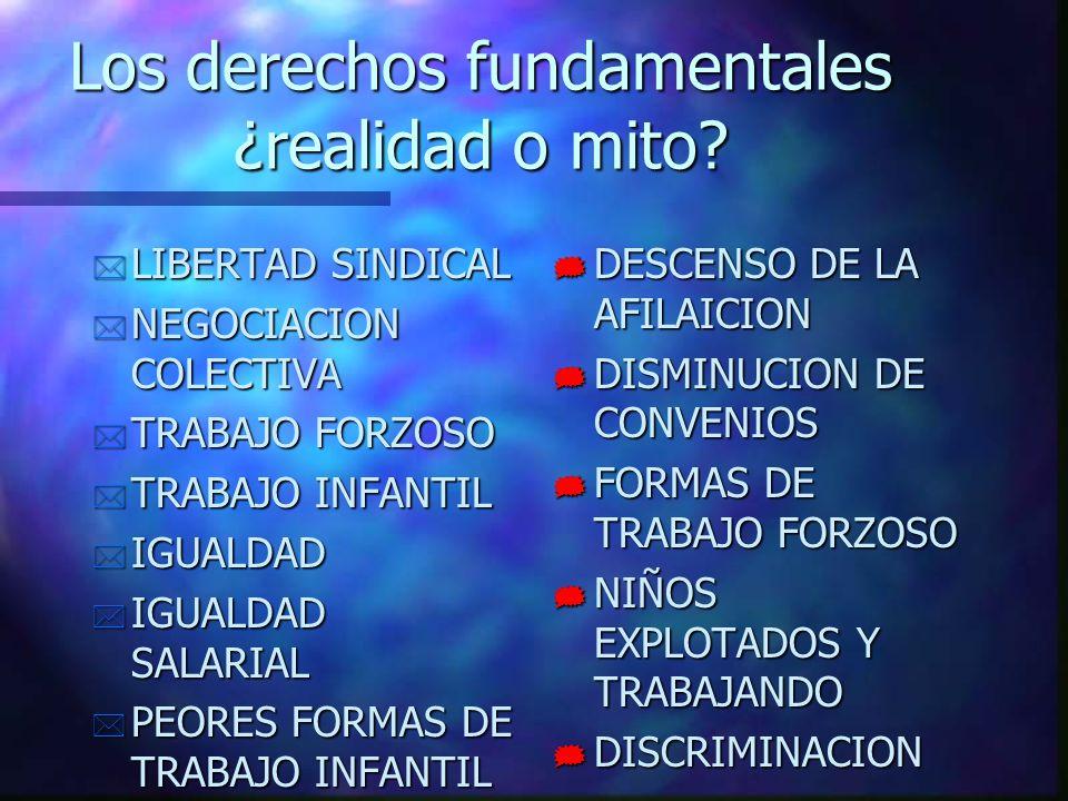 Los derechos fundamentales ¿realidad o mito