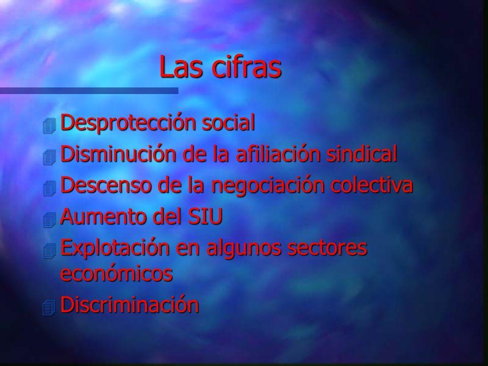 Las cifras Desprotección social Disminución de la afiliación sindical