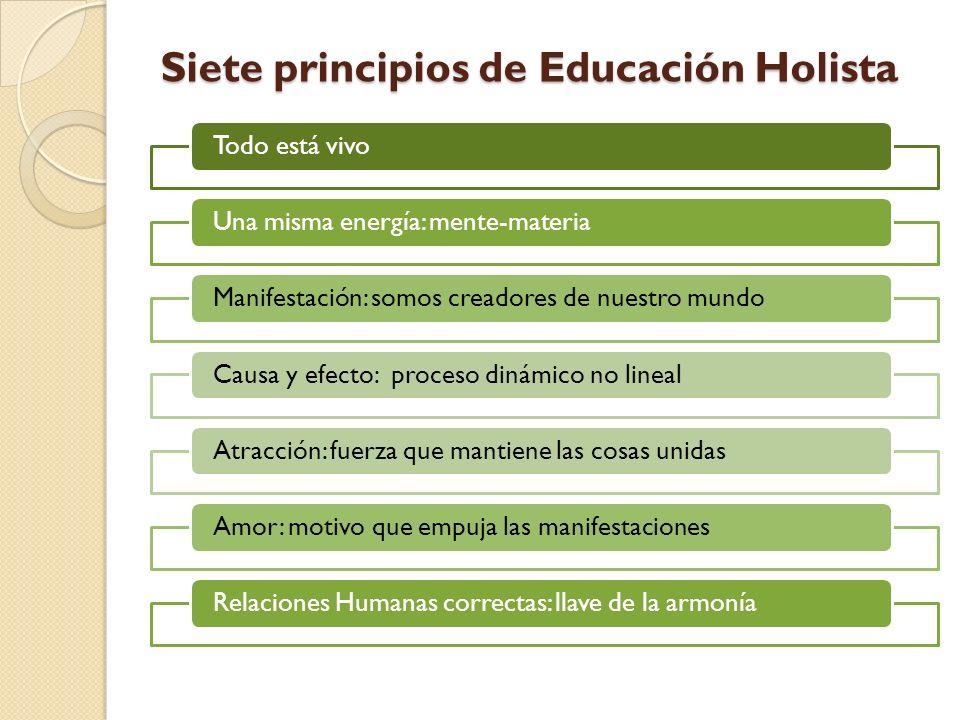 Siete principios de Educación Holista