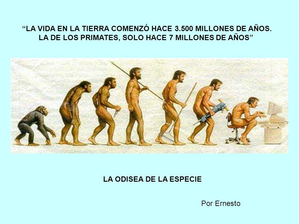 LA VIDA EN LA TIERRA COMENZÓ HACE 3.500 MILLONES DE AÑOS.