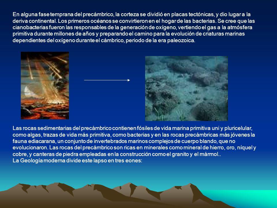 En alguna fase temprana del precámbrico, la corteza se dividió en placas tectónicas, y dio lugar a la deriva continental. Los primeros océanos se convirtieron en el hogar de las bacterias. Se cree que las cianobacterias fueron las responsables de la generación de oxígeno, vertiendo el gas a la atmósfera primitiva durante millones de años y preparando el camino para la evolución de criaturas marinas dependientes del oxígeno durante el cámbrico, periodo de la era paleozoica.