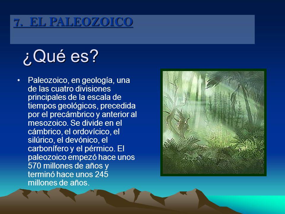 7. EL PALEOZOICO ¿Qué es