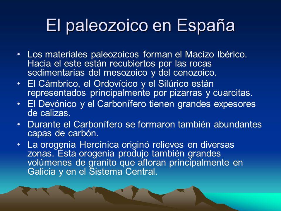El paleozoico en España