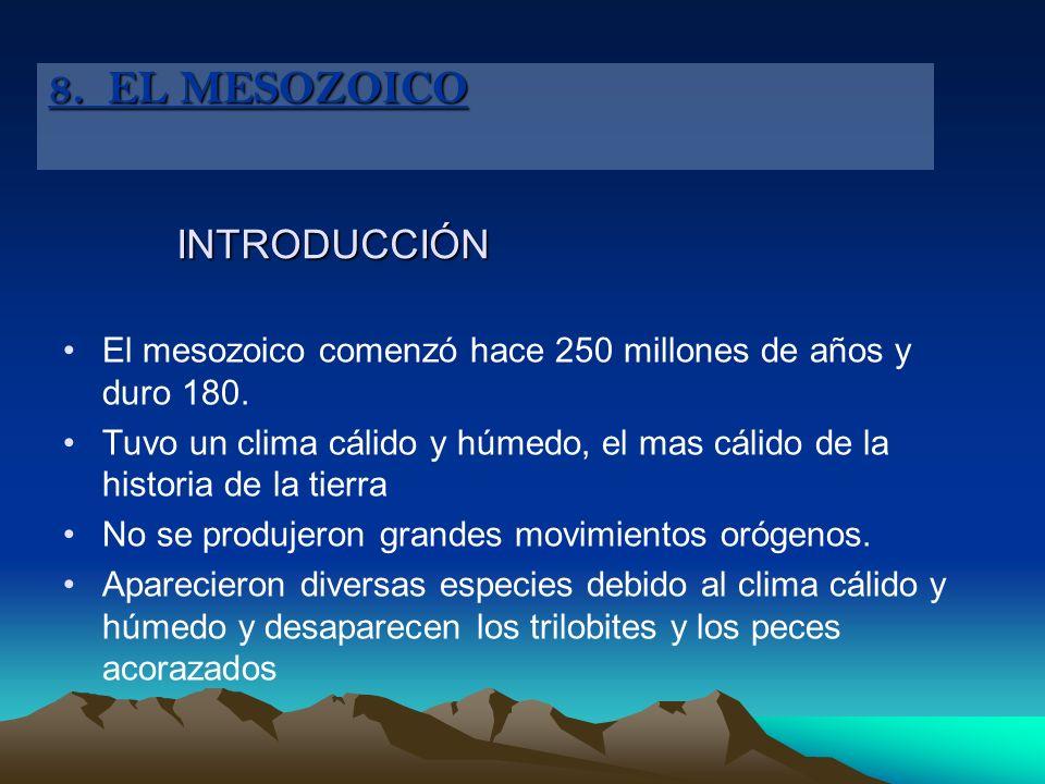 8. EL MESOZOICO INTRODUCCIÓN