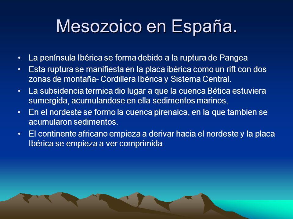 Mesozoico en España.La península Ibérica se forma debido a la ruptura de Pangea.