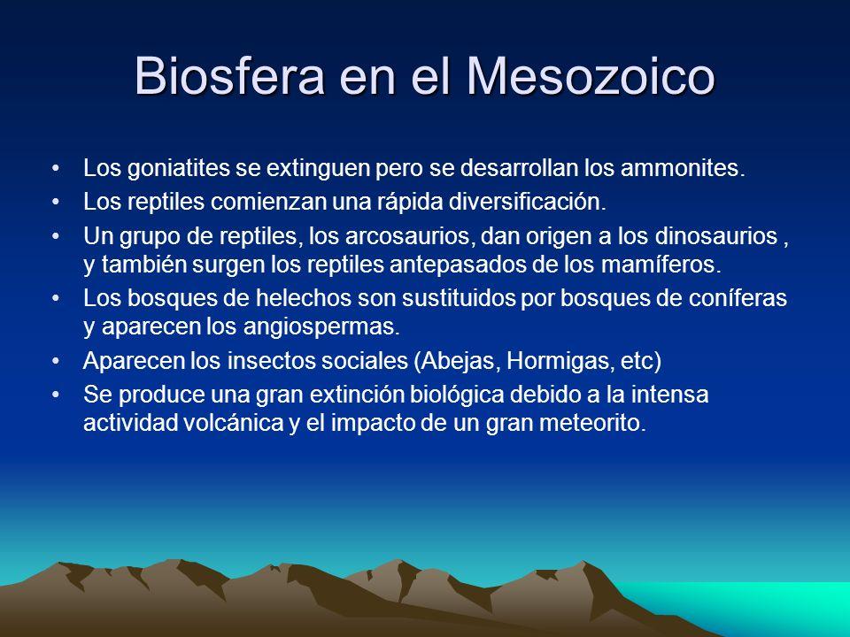 Biosfera en el Mesozoico