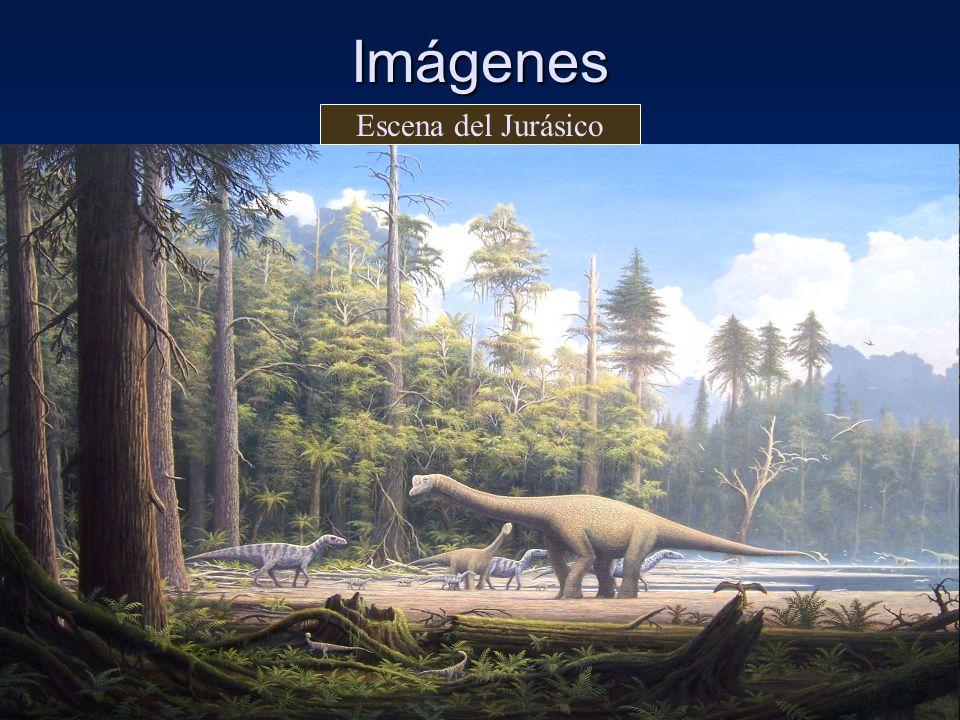 Imágenes Escena del Jurásico