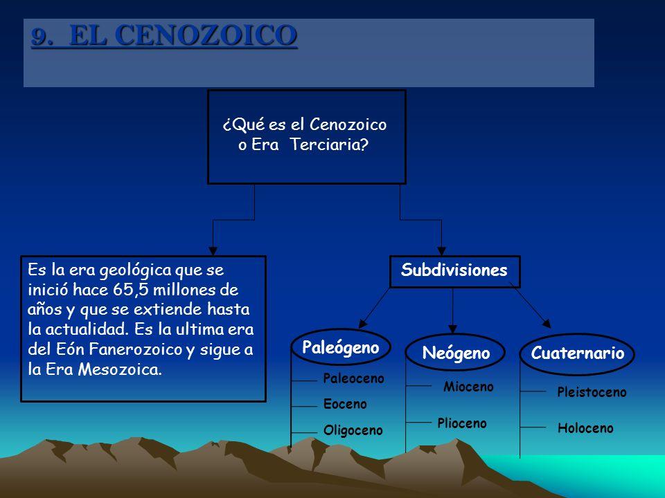 9. EL CENOZOICO ¿Qué es el Cenozoico o Era Terciaria