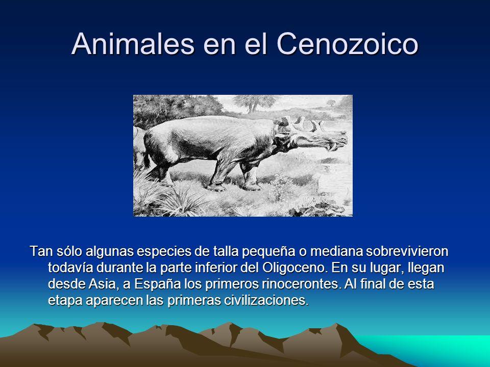 Animales en el Cenozoico