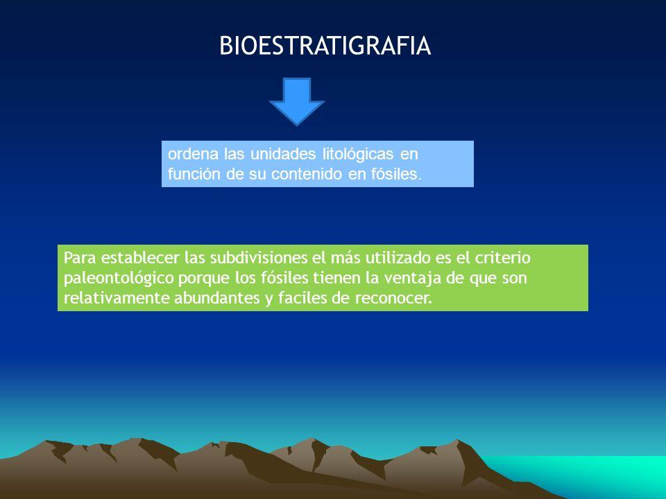 BIOESTRATIGRAFIAordena las unidades litológicas en función de su contenido en fósiles.