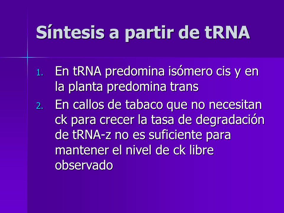 Síntesis a partir de tRNA