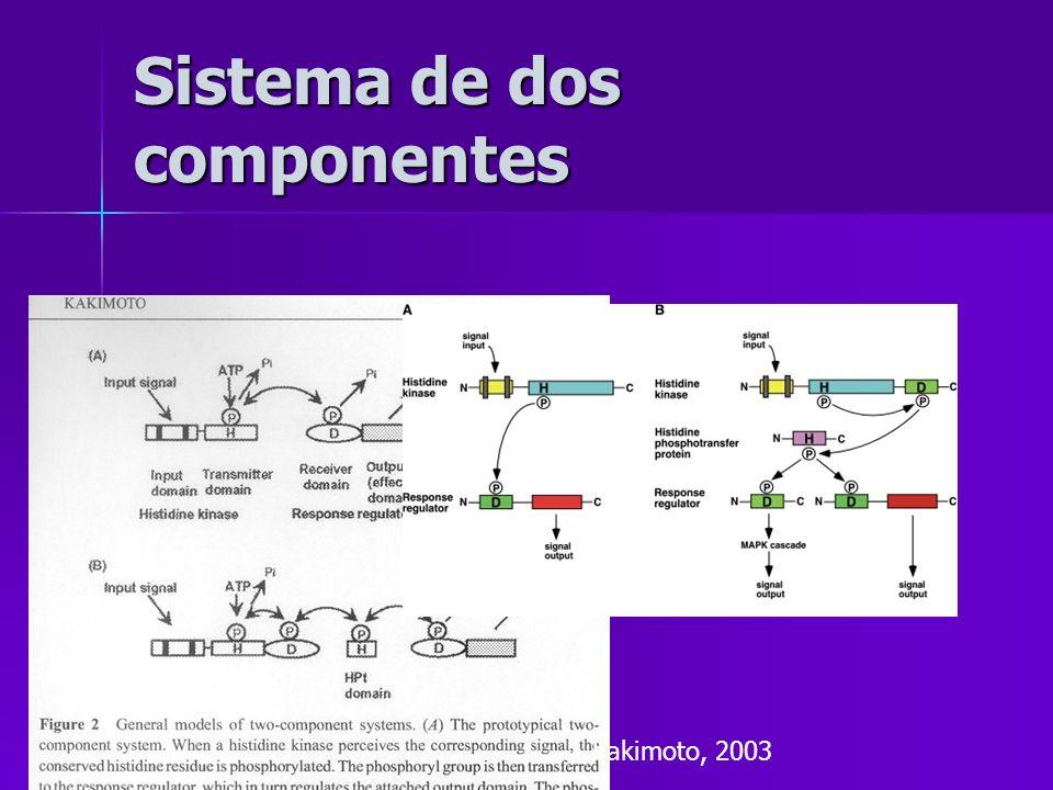 Sistema de dos componentes