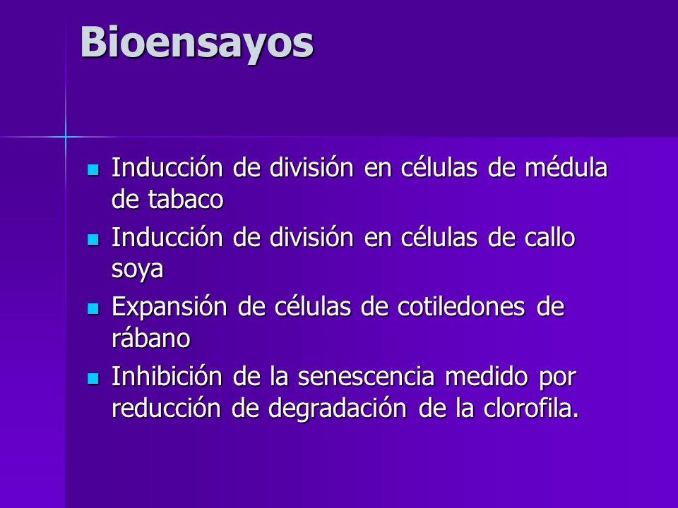Bioensayos Inducción de división en células de médula de tabaco