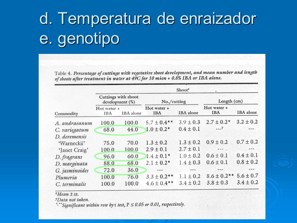 d. Temperatura de enraizador e. genotipo