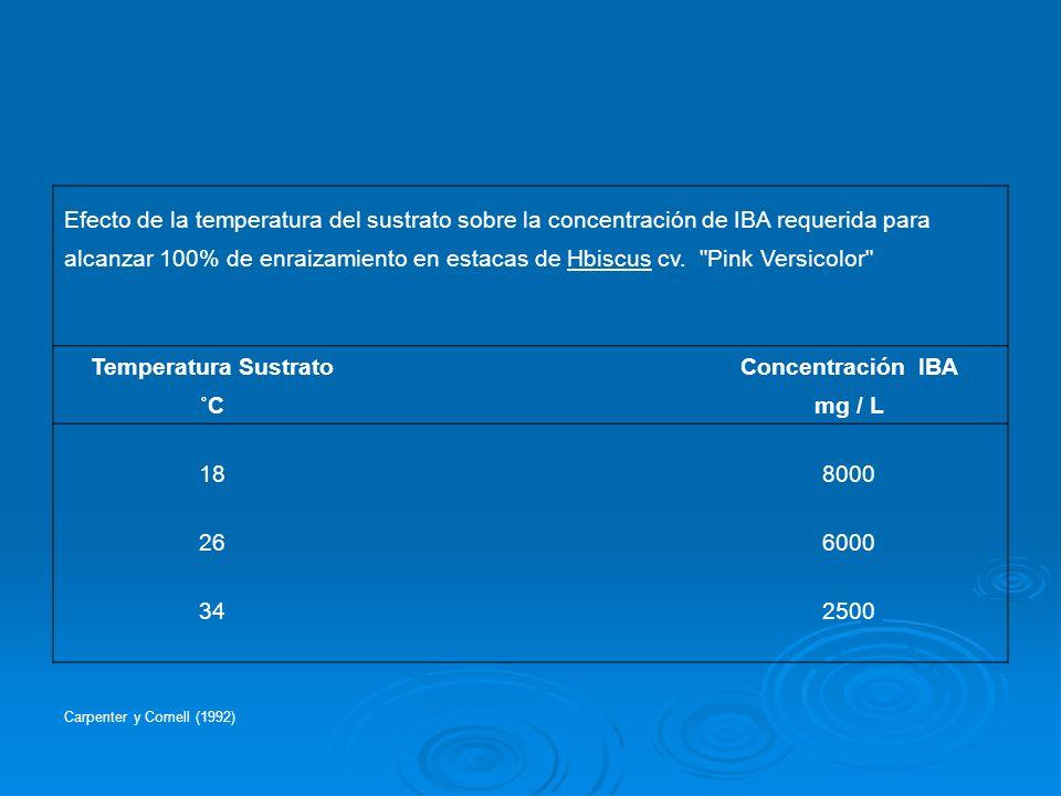 Temperatura Sustrato Concentración IBA ˚C mg / L