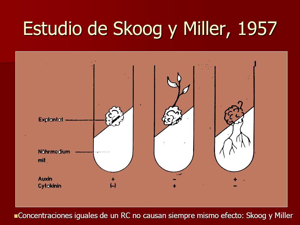 Estudio de Skoog y Miller, 1957