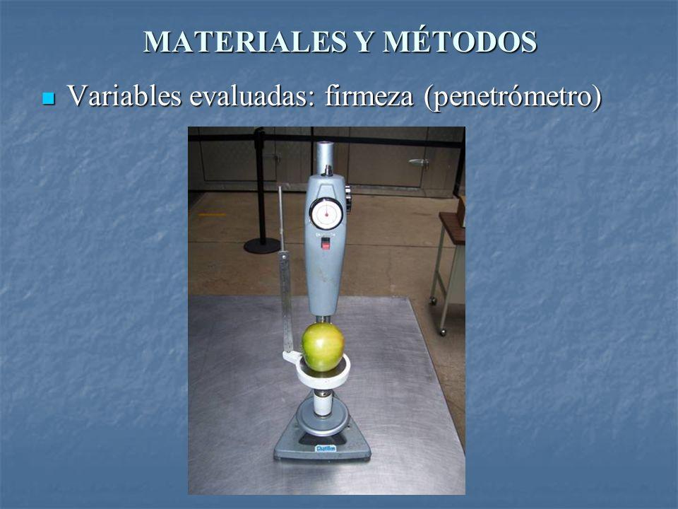 MATERIALES Y MÉTODOS Variables evaluadas: firmeza (penetrómetro)