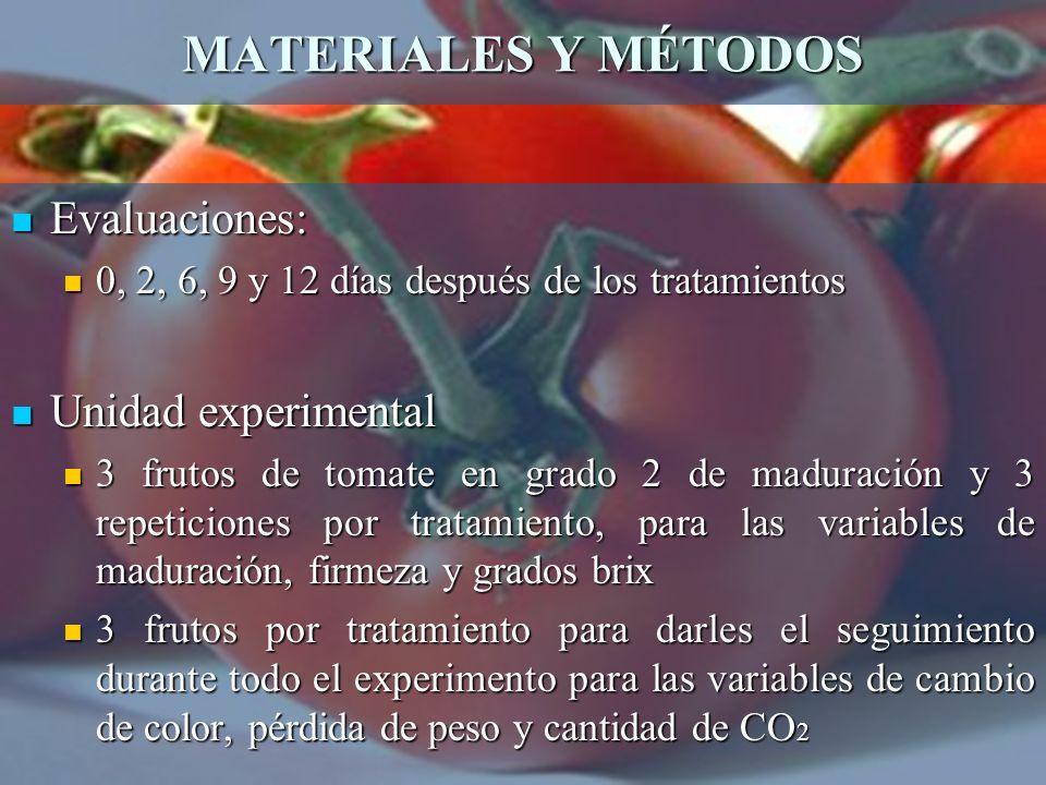 MATERIALES Y MÉTODOS Evaluaciones: Unidad experimental