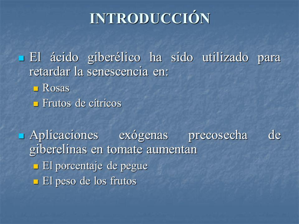 INTRODUCCIÓN El ácido giberélico ha sido utilizado para retardar la senescencia en: Rosas. Frutos de cítricos.